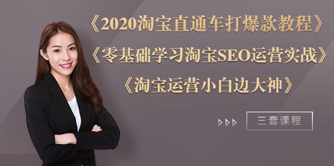 2020淘宝直通车打爆款+零基础学习淘宝SEO+淘宝运营小白变大神